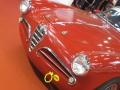 motorshow-2009-005
